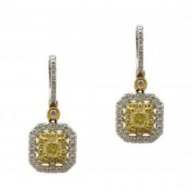 Small Amber Drops